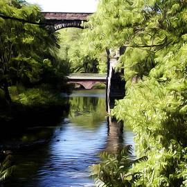 Bill Cannon - Wissahickon Creek