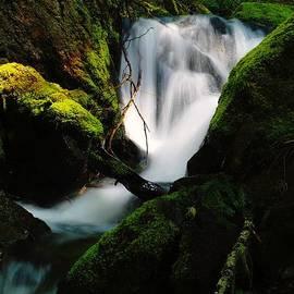 Jeff Swan - Small Waterfall