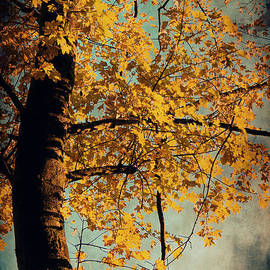 Angela Doelling AD DESIGN Photo and PhotoArt - Autumn