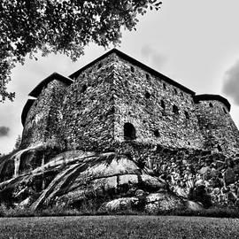 Jouko Lehto - Raasepori castle