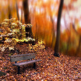 Jessica Jenney - Autumn Ablaze
