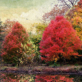 Jessica Jenney - Autumn Reflected