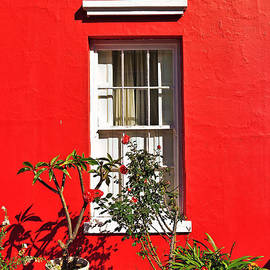 Benjamin Matthijs - Windows of Bo-Kaap