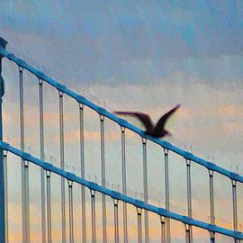 Bill Cannon - A Bridge of Sighs