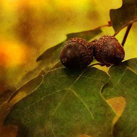 Donna Swiecichowski - A Couple of Nuts