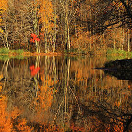 Karol  Livote - A Reflection of October