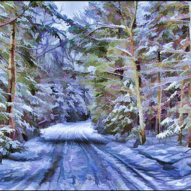 Chantal PhotoPix - A Rural Road in a Magical and Haunted Forestscape after a Snowfall in Canada