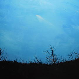 Dan  Whittemore - A Shooting Star in an Azure Sky