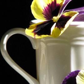 Angela Davies - A Spring Brunch