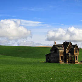 Steve McKinzie - Abandoned House on Green Pasture