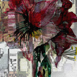 Mindy Newman - Abstract Amaryliss