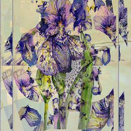 Mindy Newman - Abstract Iris