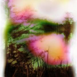 Judi Bagwell - Afterglow