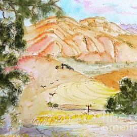 Susan  Clark - Afternoon color