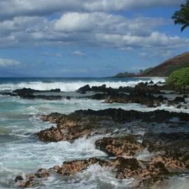 Sharon Mau - Aloha Island Dreams Paako Beach Makena Secret Cove Hawaii