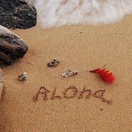 Michael Peychich - Aloha