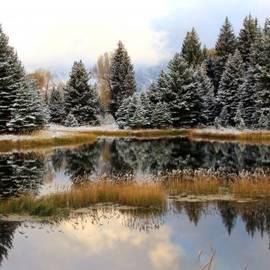 David Kocherhans - Alpine Pond