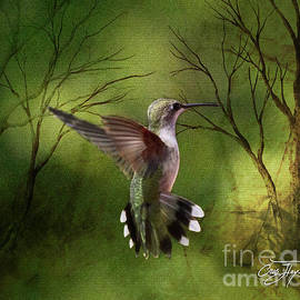 Cris Hayes - Angel Wings