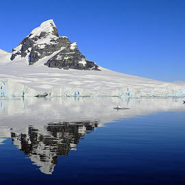 Tony Beck - Antarctic Calm