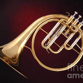M K  Miller - Antique French Horn on Deep Red
