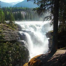 Donna Barker - Athabasca Falls