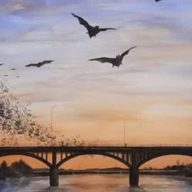 Robert Plog - Austin Bats Take Flight