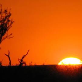 Shawn Hughes - Austin Texas Burnt Orange Sunset