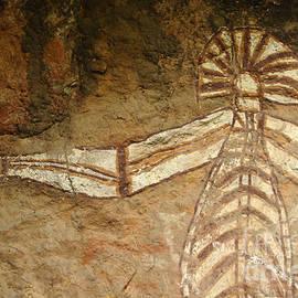 Bob Christopher - Indigenous Aboriginal Art Xray Art