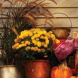 Mike Savad - Autumn - Pumpkin - Autumn Still Life II