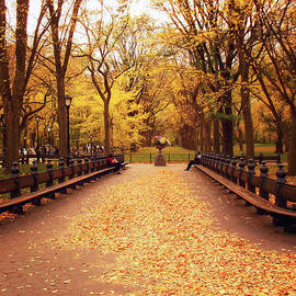 Vivienne Gucwa - Autumn - Central Park - New York City