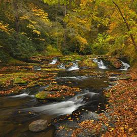 Stephen  Vecchiotti - Autumn Colors - Dingmans Creek