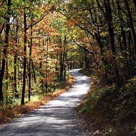 David Dehner - Autumn Country lane