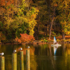 Boyd Alexander - Autumn Day