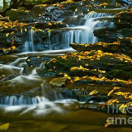 Paul W Faust -  Impressions of Light - Autumn Flow