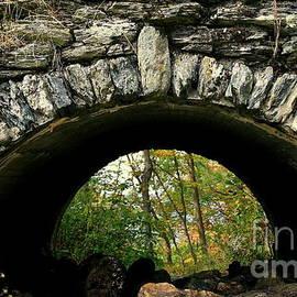 Linda Galok - Autumn Passageway