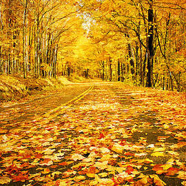 Darren Fisher - Autumn Road