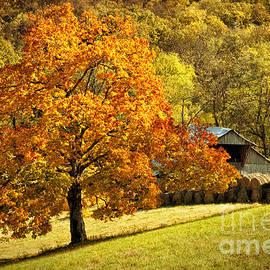 Cheryl Davis - Autumn Rustic Barn