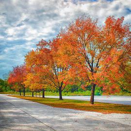 Bill Tiepelman - Autumn Trees At Busch