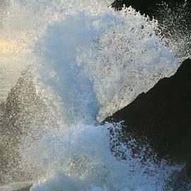 Michael Courtney - Backlit Wave 2