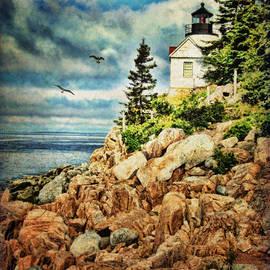 Lianne Schneider - Bass Harbor - Acadia NP