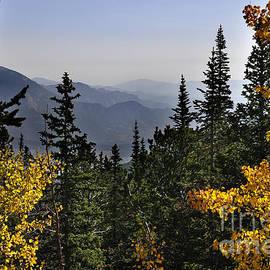 Nava  Thompson - Beautiful Fall in Colorado