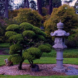 Kathleen Struckle - Beautiful Gardens
