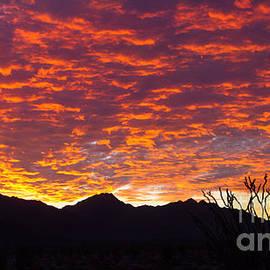 Robert Bales - Beautiful Sky