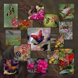 DigiArt Diaries by Vicky B Fuller - Beauty in Butterflies