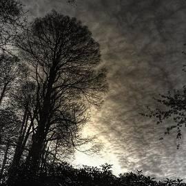 Prashant Ambastha - Beginning Of Twilight