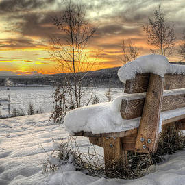 Thomas Payer - Bench Waiting for Summer