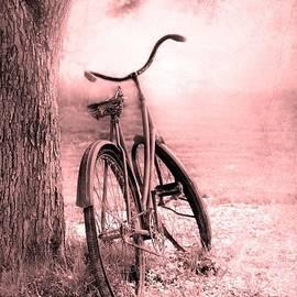 Sophie Vigneault - Bicycle in Pink