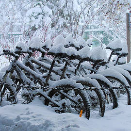 Heidi Smith - Bicycles In The Snow