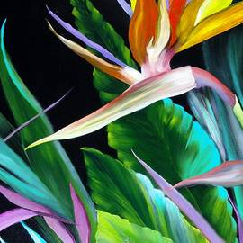 Carol Avants - Bird of Paradise
