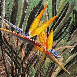 Sharon  De Vore - Bird of Paradise